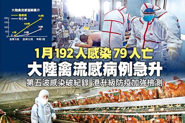 Tại Trung Quốc đại lục, tình hình lây lan dịch cúm gia cầm ngày càng nghiêm trọng, theo công bố của chính quyền Trung Quốc, chỉ trong tháng Giêng vừa qua toàn Trung Quốc đã xảy ra 192 trường hợp nhiễm H7N9. (Ảnh: Epoch Times)