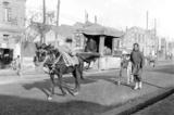 Bắc Kinh 100 năm trước qua ống kính một nhà xã hội học người Mỹ