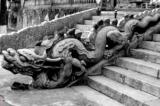 Hình tượng rồng Việt Nam qua các thời đại