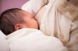 Ảnh: Thí nghiệm đĩa cấy vi khuẩn cho thấy sức mạnh đáng nể của sữa mẹ