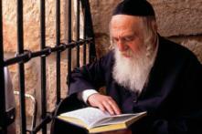 Người Do Thái đọc sách không chỉ lấy tri thức mà còn để tẩy rửa tâm linh (video)