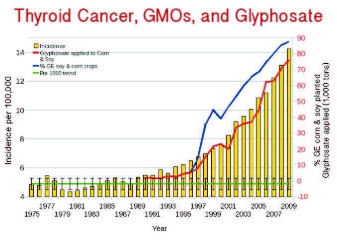 Ung thư tuyến giáp gia tăng nhanh kể từ khi GMO được đưa vào sử dụng năm 1996 và glyphosate được phun tràn lan (nguồn: responsibletechnology.org)