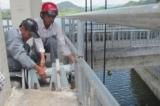 Khởi tố vụ án ba thanh niên say rượu, xả lũ hồ chứa gây ngập tại Phú Yên