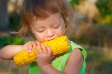 Thực phẩm biến đổi gen: Nguy cơ 'thảm họa chất độc da cam' lần 2