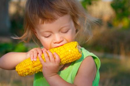 Thực phẩm biến đổi gen: Nguy cơ của một 'thảm họa chất độc da cam' lần 2