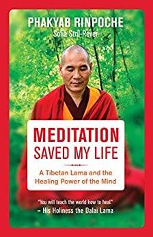 Cuốn sách: Meditation saved my life