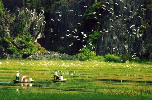 Ninh Bình: Kinh Đô Hoa Lư dấu ấn còn lại của nước Đại Cổ Việt