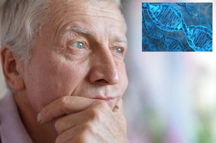Nhà sinh học tế bào: Ý nghĩ của bạn kiểm soát DNA