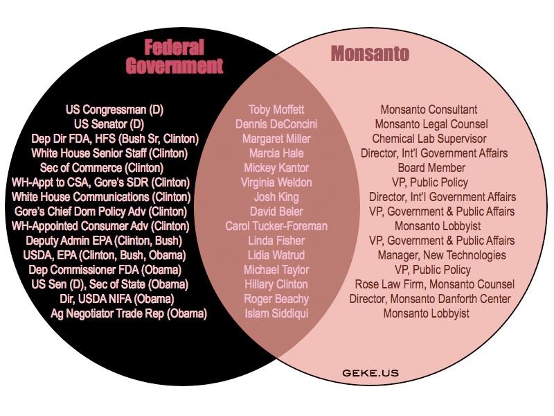 Rất nhiều quan chức trong chính phủ Mỹ đã từng là nhân viên hoặc làm việc cho Monsanto, kể cả Hillary Cliton (nguồn: geke.us)