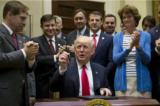 100 ngày đầu tiên của Trump: Chỉ số Dow Jones tăng trưởng đột phá