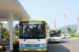 Đà Nẵng: Ra mắt phần mềm Danabus tra cứu thông tin xe bus