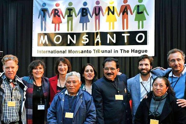 Tòa kết luận hoạt động thương mại đối với cây trồng biến đổi gien của Monsanto gây ảnh hưởng đến các quyền về lương thực và y tế vì đã ép buộc nông dân phải chấp nhận các phương thức canh tác xa rời truyền thống. (ảnh: EcoWatch)