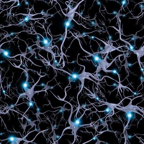 Bộ não bạn giống một vũ trụ thu nhỏ đến mức nào?