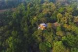 Vợ chồng người Mỹ mua đất hoang ở Ấn Độ và dành 25 năm để cải tạo thành rừng