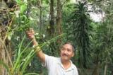 Trao 3 kỷ lục Việt Nam cho một người dân tại Đắk Lắk
