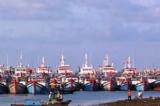 Bà Rịa-Vũng Tàu: Hơn 1.000 ngư dân thuộc 153 tàu cá bị nước ngoài bắt giữ