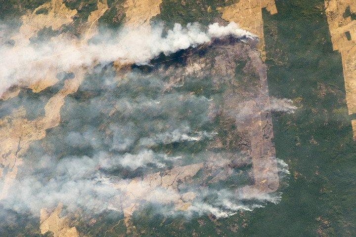 Một phi hành gia đã chụp được bức ảnh về vụ cháy rừng nhiệt đới Amazon (ảnh: NASA)