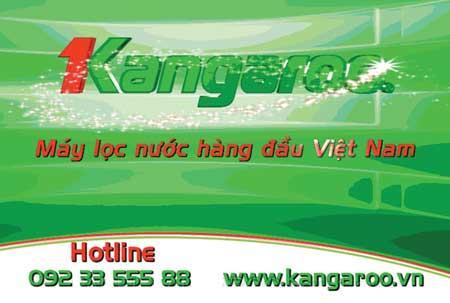 Ở Việt Nam,