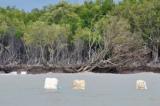 Sạt lở 891km bờ biển, bờ sông – Vùng ĐBSCL đang mất dần?