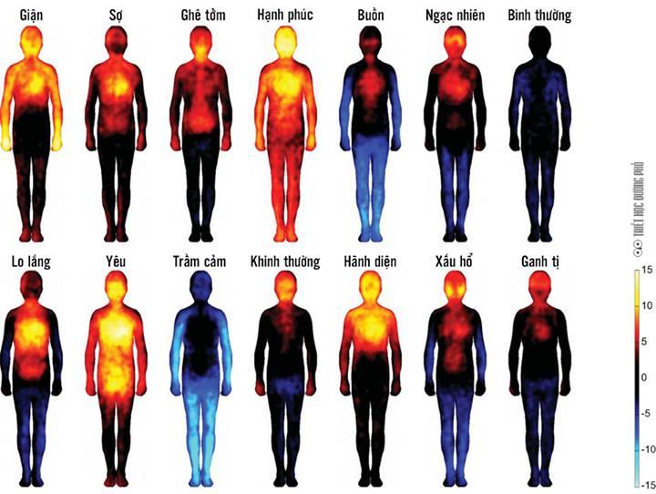 Các cảnh giới khác nhau có tần số năng lượng khác nhau