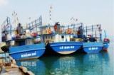 Hàng loạt tàu vỏ thép han rỉ, hỏng hóc: Ngư dân Bình Định sẽ khởi kiện?