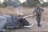 Một thợ săn 'khét tiếng' bị voi đè chết trong khi đi săn