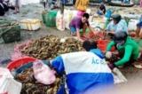 Tôm hùm chết hàng loạt ở Phú Yên: Người dân tập trung tại nhà máy để làm rõ nguyên nhân
