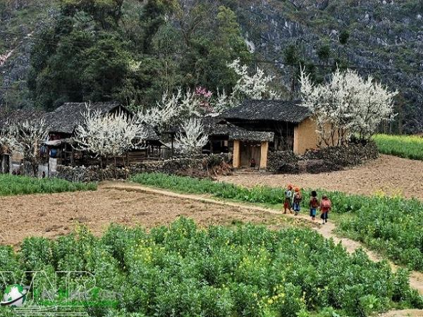 Lai Châu: Đường lên cổng trời Tây Bắc