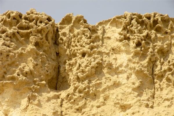 Tảng đá trên cùng của đền Nhân sư, cho thấy những xói mòn rỗ tổ ong ăn sâu và những hạt trầm tích phù sa đã tích tụ và bám trên bề mặt khi nước rút đi. Xói mòn loại này chỉ ở Giza mới có, cho thấy niên đại xa xưa của công trình ở đây.(ảnh:gizaforhumanity.org)
