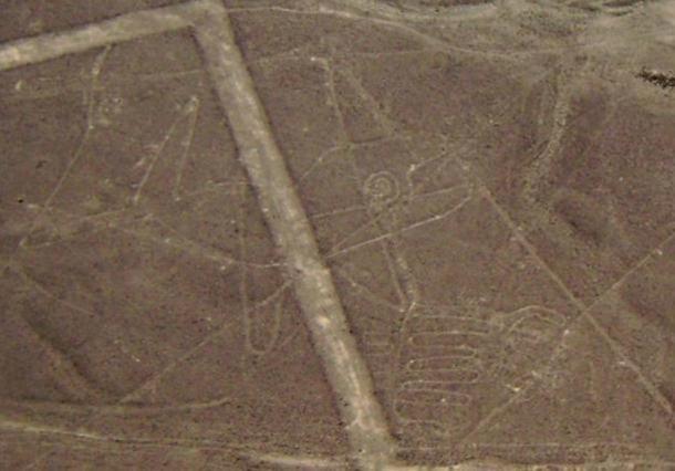 Hình vẽ của một con cá voi giữa sa mạc (ảnh: Wiki)