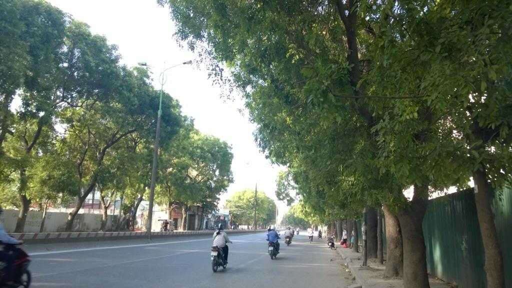 Hàng cây xanh mát dọc trên đường Phạm Văn Đồng đang đứng trước nguy cơ bị chặt hạ để làm đường. (Ảnh: Sơn Trà)