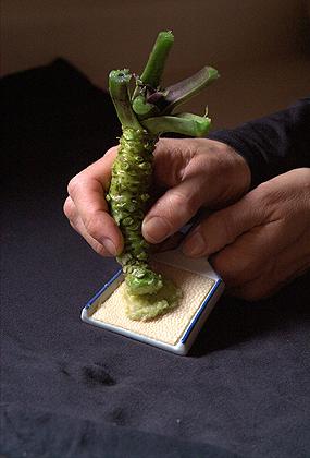 che bien wasabi