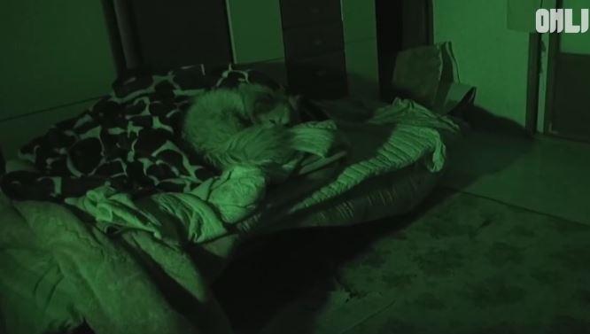 Khi trời lạnh, Boksil sẽ rúc vào chiếc chăn cũ của bà chủ để lấy hơi ấm.