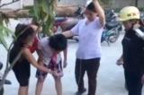 Nghệ An: Học sinh ngộ độc hạt cây ngô đồng, nhiều trường chặt bỏ cây
