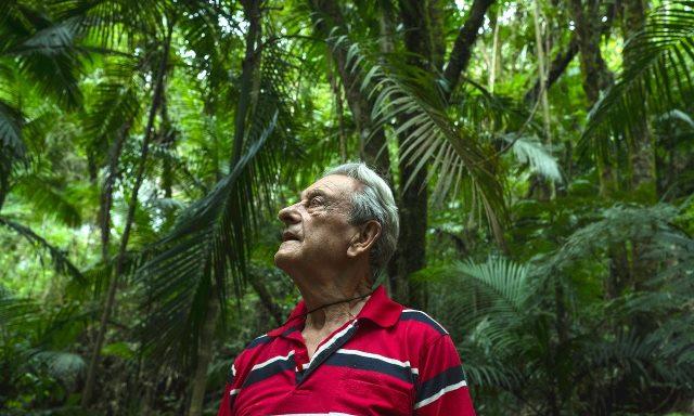 Antonio Vicente trong rừng. Ông đã trồng rừng trên mảnh đất của mình trong 40 năm, mang sự sống trở lại một khu vực đã được san bằng để chăn thả gia súc. (Ảnh: Tommaso Protti)