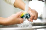 Giáo sư của ĐH London: 'Cho đến giờ, thứ bẩn nhất vẫn là miếng rửa chén'