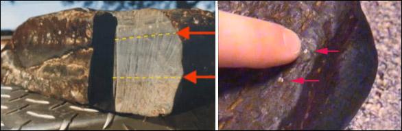 Trái: Kết quả phân tích củaphòng thí nghiệm Galbraith Labs tại Knoxville, Tennessee, Mỹ cho thấy mẫu gỗ hóa thạch này chứa tới 0,7% carbon hữu cơ.