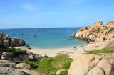 Kiến nghị Thủ tướng về việc cấp phép nhận chìm chất thải nạo vét của Nhiệt điện Vĩnh Tân