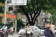 Năm 2017 sẽ thu 7.046,8 tỷ đồng phí sử dụng đường bộ
