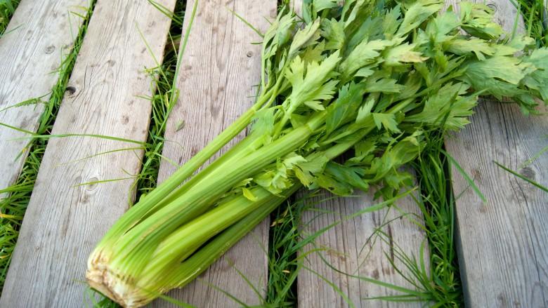 8 lợi ích sức khỏe bất ngờ của cần tây và hạt cần tây