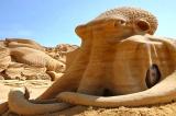 Những tác phẩm điêu khắc cát mang các sinh vật dưới đại dương lên mặt đất