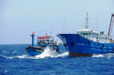 Tàu cá Bình Định bị tấn công trên biển, 4 thuyền viên bị bắn trọng thương