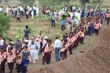 Ấn Độ lập kỷ lục thế giới: Trồng 66 triệu cây xanh chỉ trong 12 giờ