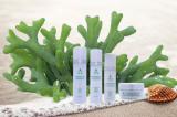 Công dụng ít biết của tảo biển: Nguồn nguyên liệu lý tưởng làm mỹ phẩm