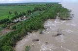 Cà Mau mất 450 ha đất, rừng phòng hộ mỗi năm do sạt lở