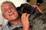 Chú chó sủa đánh thức chủ nhân đang hôn mê nhận được giải thưởng đặc biệt