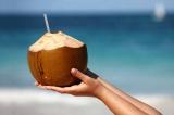 Y học cổ truyền: Vì sao nước dừa có thể phòng và hỗ trợ điều trị sốt xuất huyết?