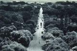 Những bức ảnh quý về Sài Gòn đầu thập niên 1950