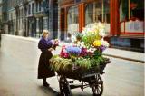 Những bức ảnh màu hiếm có về Paris 100 năm về trước