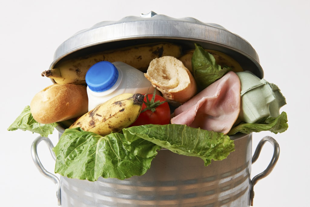 lãng phí thực phẩm